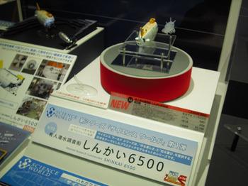 hasegawa-shinkai.jpg